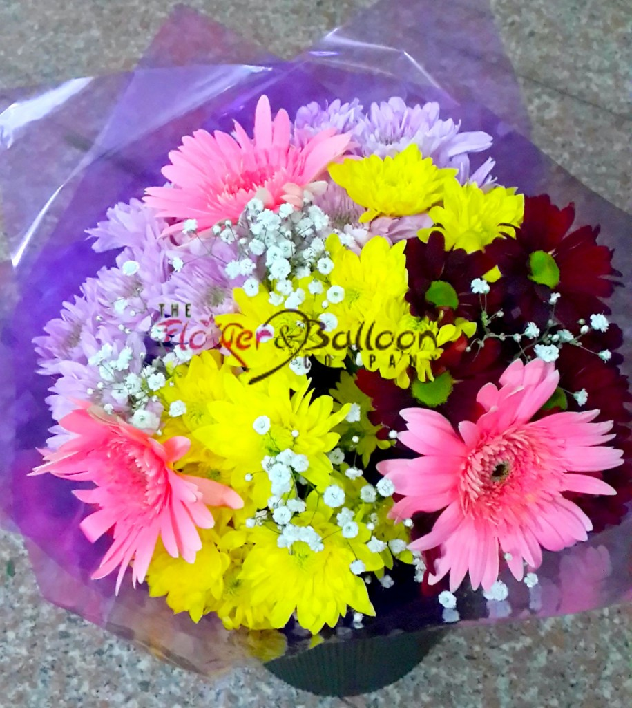 A beautiful selection of Chrysanthemums with Daisies & Baby's Breath