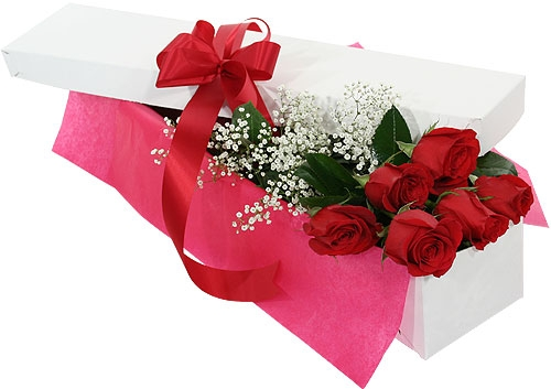 6 Red Roses with Babies Breath