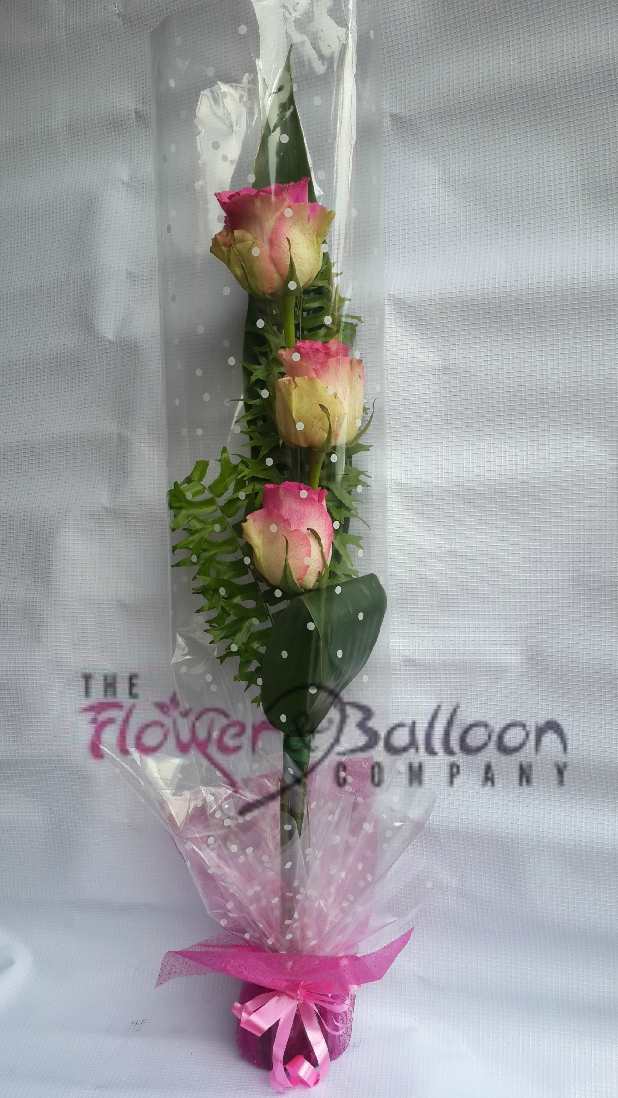 3 Stems Roses Wrapped In Cello Flowerandballooncompany Com