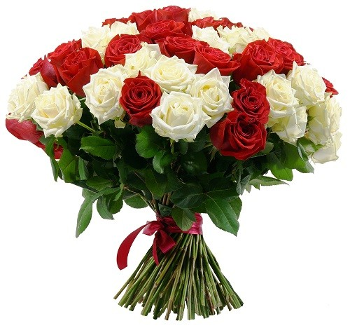 Mixed Roses for Birthdays,Anniversary,Wedding, Valentine and More
